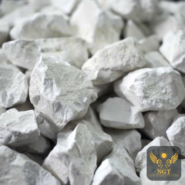 NGT Vietnam Quicklime Supplier
